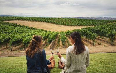 Formez-vous dès maintenant aux métiers du vin