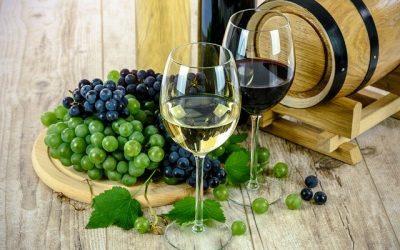 Le vin et ses véritables utilités dans la vie quotidienne